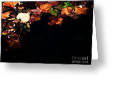 Midnight Feast Greeting Card