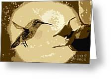 Midnight Hummingbird Greeting Card