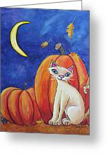 Midnight In The Pumpkin Patch Greeting Card