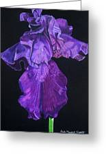 Midnight Iris Greeting Card