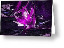 Midnight Paradise Greeting Card