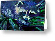 Midnight Racoon Greeting Card