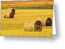 Midwest Farming Greeting Card