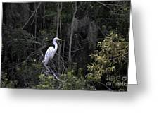 Mighty Heron Greeting Card