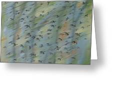 Migratory Geese Moon April Greeting Card by Ethel Vrana