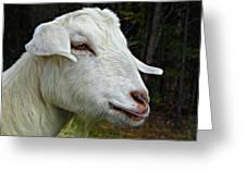 Milkshakes The Goat Greeting Card