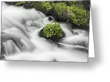 Milky Stream Greeting Card