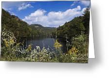 Mill Creek Lake - D001303 Greeting Card