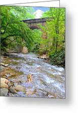 Mill Creek Viaduct Greeting Card by Bob Jackson