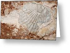 Million Years Ago 1 Greeting Card