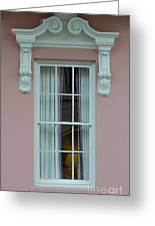 Mills House Window Greeting Card