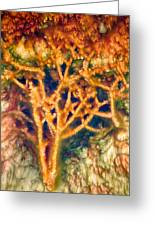 Mineral Branches Hot Springs Greeting Card