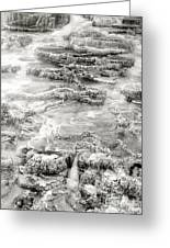 Minerva Springs In Black And White Yellowstone National Park Wyoming Greeting Card