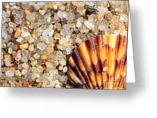 Mini Beach Vacation Greeting Card