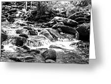 Mini Cascades Smoky Mountains Bw Greeting Card