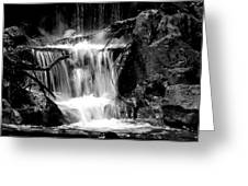 Mini Falls Black And White Greeting Card