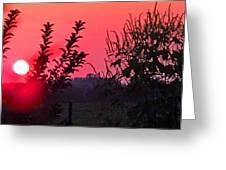 Mini Sunset Greeting Card