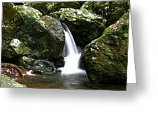 Miniature Cascade Greeting Card