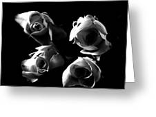 Miniature Roses Black And White 2 Greeting Card