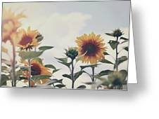 Minimal Sunflowers Against Blue Sky In Autumn Greeting Card
