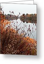 Mirror Smooth River Greeting Card