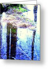 Climbing The Mirror Trees Greeting Card