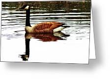 Mirrored Goose Greeting Card