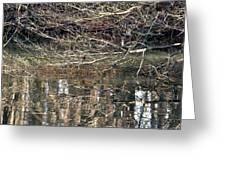 Mirroring Waters Greeting Card