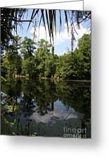 Mirrow Lake - Magnolia Gardens Greeting Card
