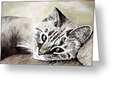 Miss Lilly Greeting Card