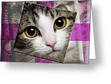 Miss Tilly The Gift 3 Greeting Card