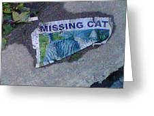Missing Cat Greeting Card