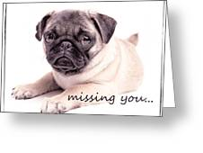 Missing You... Greeting Card by Edward Fielding