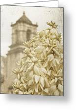 Mission San Jose And Blooming Yucca Greeting Card