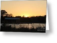 Mississippi Bayou 11 Greeting Card