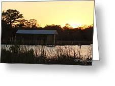 Mississippi Bayou 12 Greeting Card