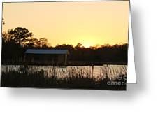 Mississippi Bayou 16 Greeting Card