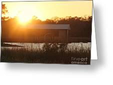 Mississippi Bayou 4 Greeting Card