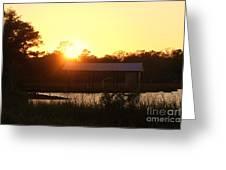 Mississippi Bayou 5 Greeting Card