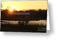 Mississippi Bayou 7 Greeting Card