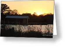 Mississippi Bayou 9 Greeting Card
