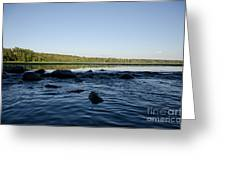 Mississippi Headwater And Lake Itasca Greeting Card