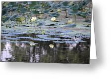 Mississippi Lotus Greeting Card