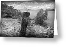 Mississippi River - Bw Greeting Card