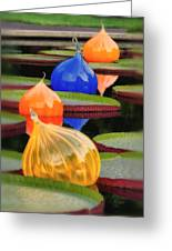 Missouri Botanical Garden Six Glass Spheres And Lilly Pads Img 5490 Greeting Card