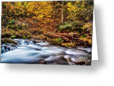 Mist Of Colors Greeting Card