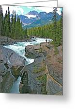 Mistaya Canyon Along Icefield Parkway In Alberta Greeting Card