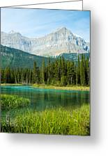 Mistaya River And Mountains Greeting Card