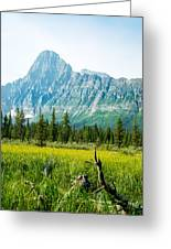 Mistaya River Valley And Mountain Range Greeting Card