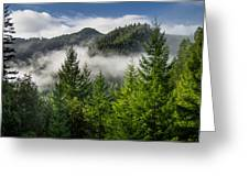 Mists Among The Hills Greeting Card